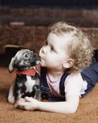 Домашнее животное и ребенок