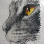 Крупный кот Мальвин
