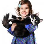 Кошки и дети.