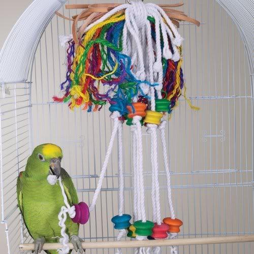 Попугаи волнистые игрушки своими руками
