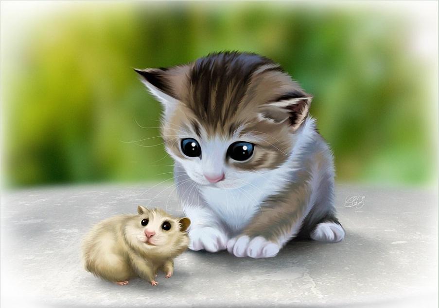 Кошка и хомяк