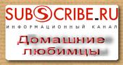 Наша группа на Subscribe.ru
