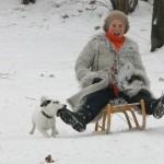 Прогулки и игры с собакой